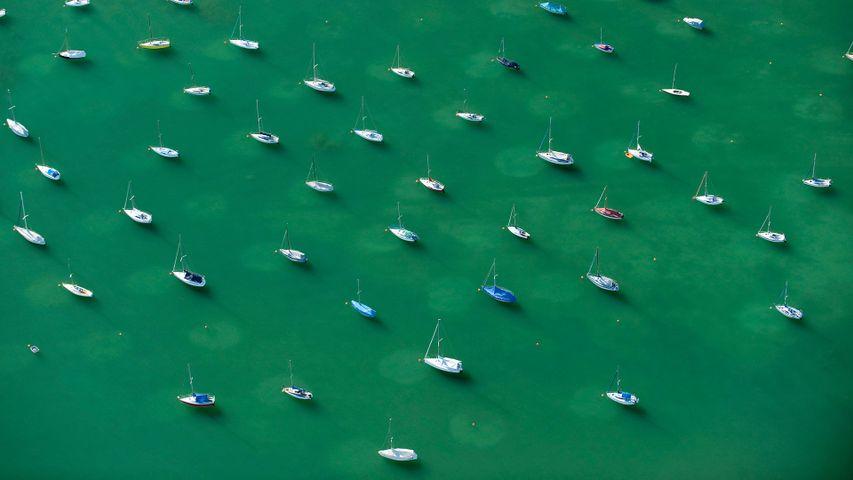 Ankernde Segelboote auf dem Bodensee, Friedrichshafen, Baden-Württemberg, Deutschland