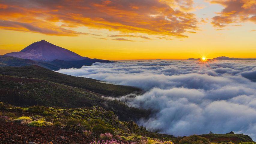 Atardecer sobre un mar de nubes a los pies del Teide, Tenerife, Islas Canarias