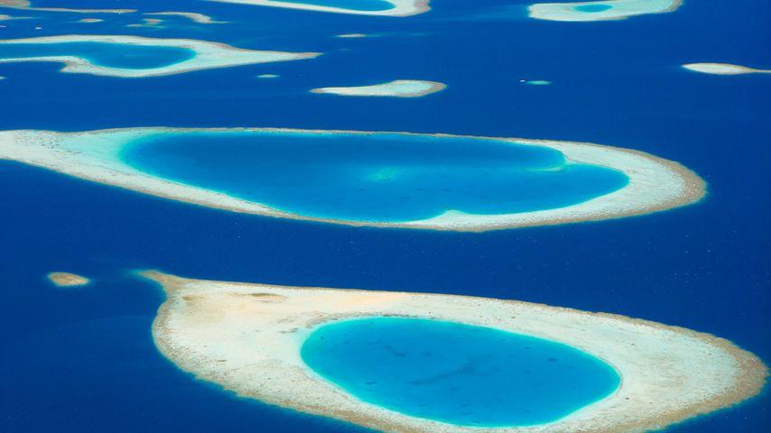 「モルディブの環礁」モルディブ
