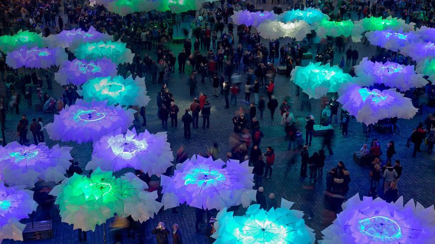 The installation 'Waldplastik' during Blue Night in Nuremberg, German