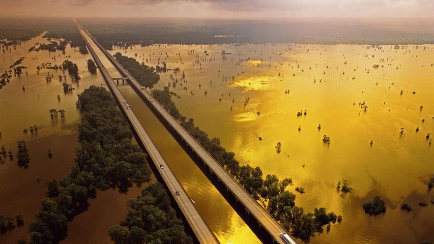 【今日处暑】美国10号州际公路上的阿查法拉亚盆地桥,美国路易斯安那州