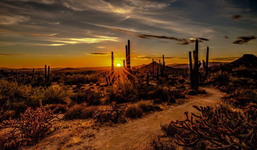 sky outdoor sunset grass sun cloud desert landscape