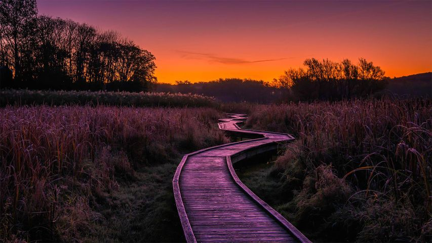 Stairway to Heaven trail in Wawayanda State Park, New Jersey