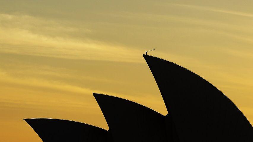 Arkady Shilkloper plays his three-metre-long alphorn atop the Sydney Opera House as part of the 2013 Sydney Festival