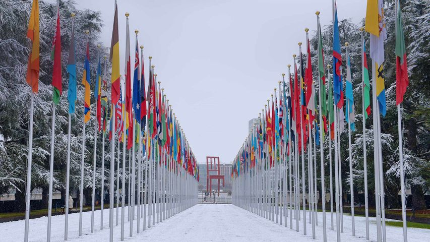 Flags outside the UN's Palace of Nations in Geneva, Switzerland