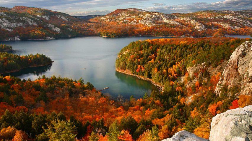 Autumn in Killarney Provincial Park, Ont.