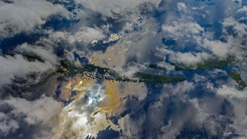 「アマゾン盆地」ブラジル, アマゾナス州
