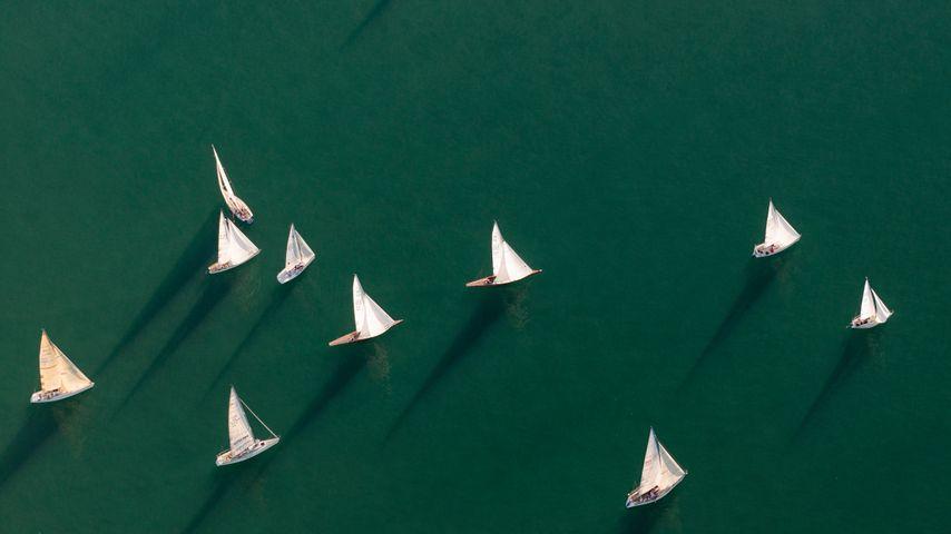 Luftaufnahme von Segelbooten, Friedrichshafen, Bodensee, Baden-Württemberg