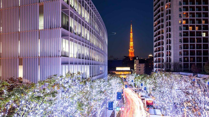 「けやき坂のイルミネーションと東京タワー」東京, 六本木