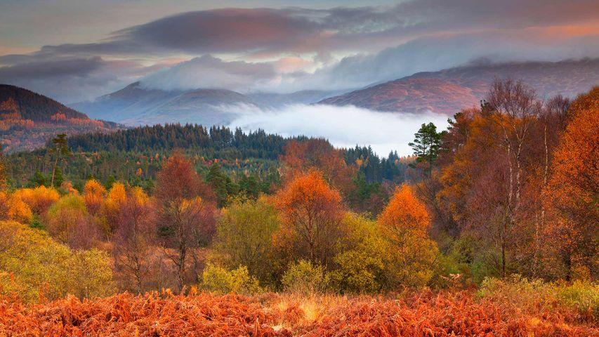 Loch Lomond and The Trossachs National Park in autumn, Scotland