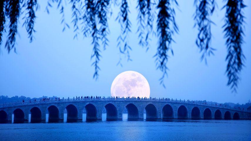 [中秋快乐] 北京,月亮从颐和园的十七拱桥上升起
