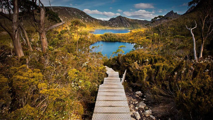 Cradle Mountain-Lake St Clair National Park, Tasmania, Australia