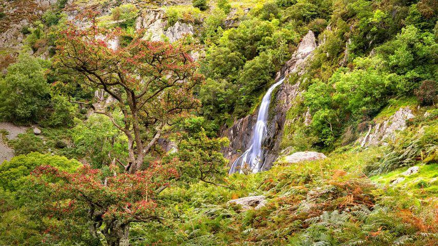 Aber Falls in Snowdonia National Park, Gwynedd