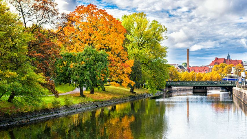 tree outdoor water lake autumn landscape fall sky