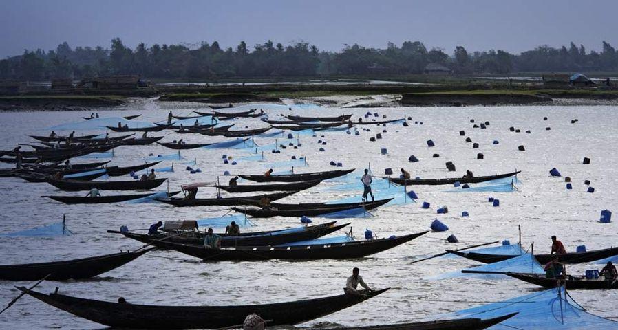 孟加拉国正在捕鱼的渔民