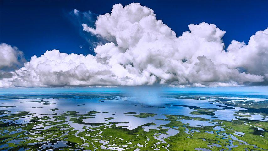 「エバーグレーズ国立公園」米国, フロリダ州
