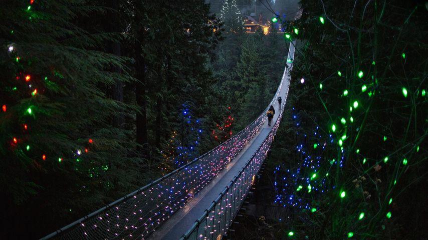 Pont suspendu Capilano à Vancouver, Colombie-Britannique, Canada