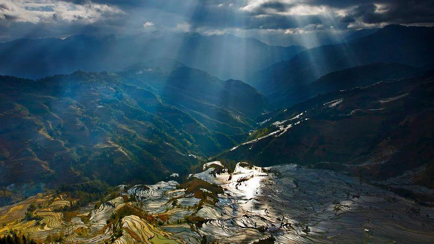 【劳动节】云南省元阳县,倒映在梯田里的阳光