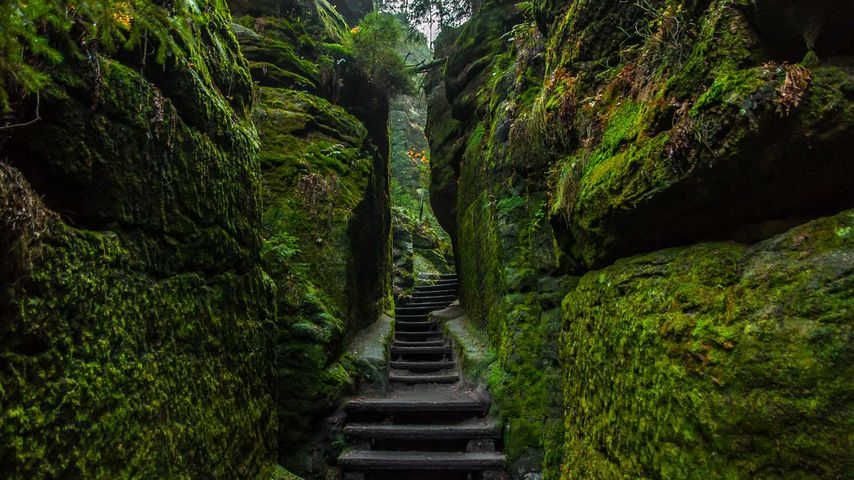 「ザクセン・スイス国立公園」ドイツ, ザクセン自由州