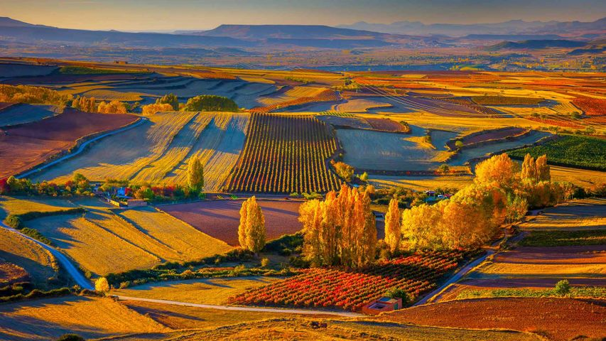 Autumnal landscape near the town of Clavijo in Spain's Rioja district