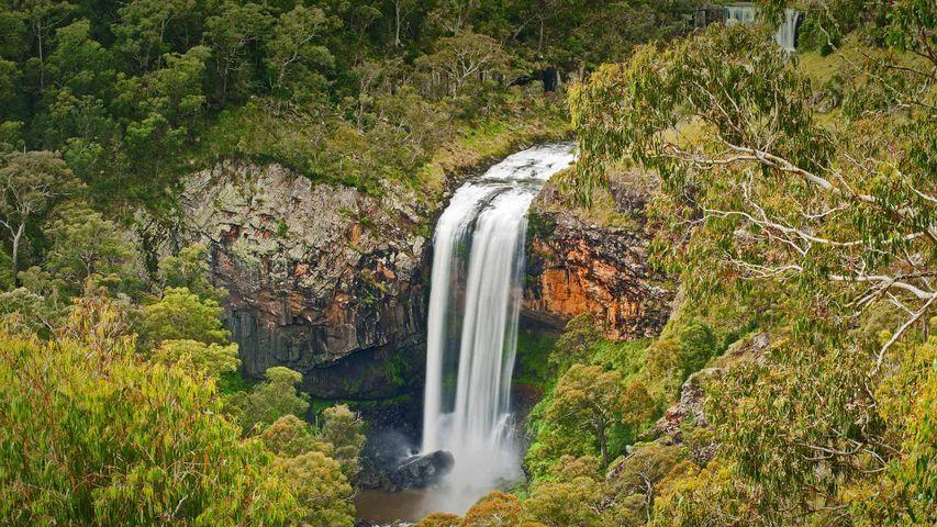 Ebor Falls im Guy-Fawkes-River-Nationalpark, Australien