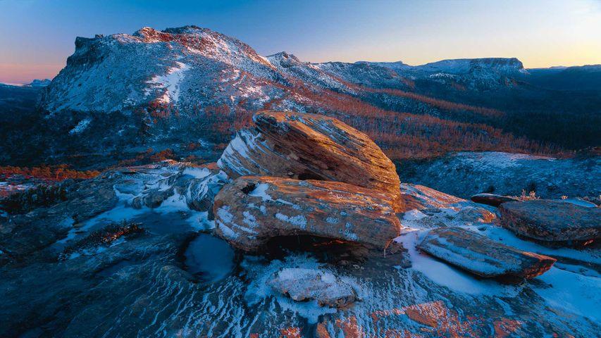 Cradle Mountain-Lake St Clair National Park, Tasmania, Australia