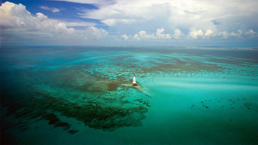 Alligator Reef Light in the Florida Keys