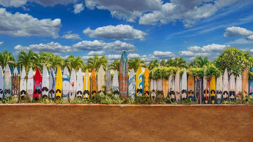 A surfboard fence near Paia, Maui, Hawaii