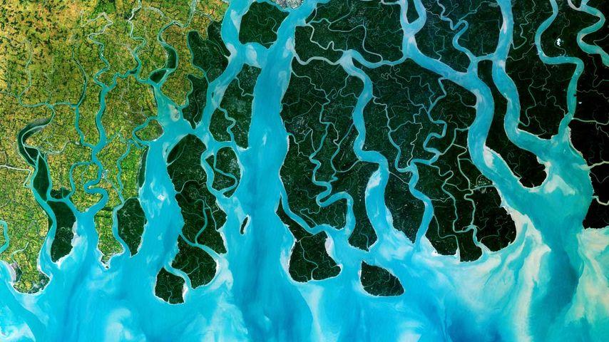 Satellite photo of the Ganges Delta, India and Bangladesh
