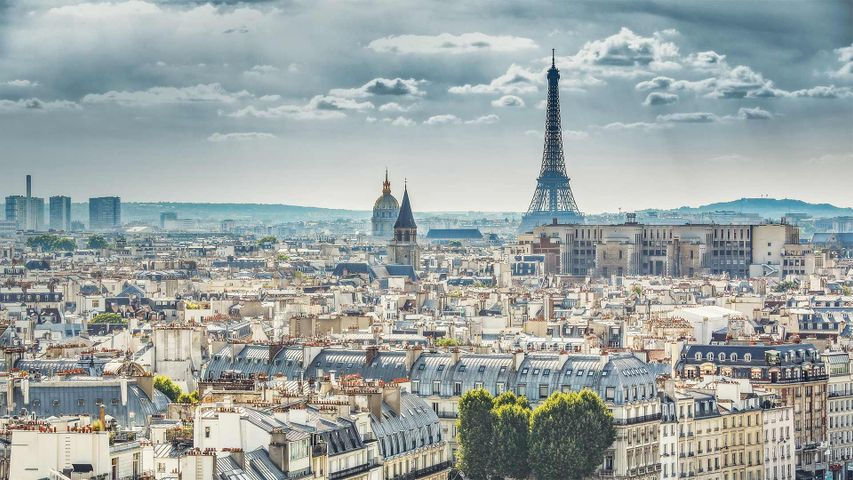View of Paris, France, with the Eiffel Tower taken from Notre Dame Cathedral