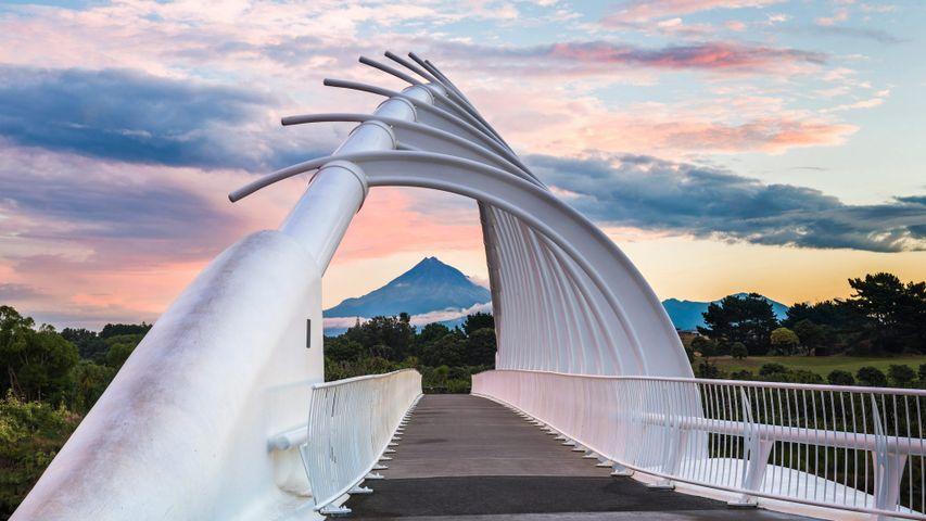 Te Rewa Rewa Bridge near New Plymouth, New Zealand