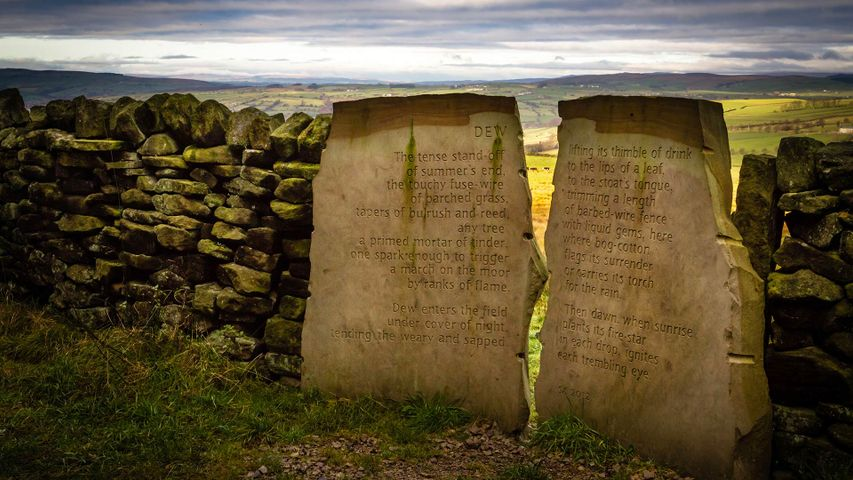 The Dew Stone, part of the Stanza Stones trail, in Yorkshire