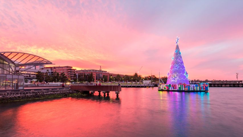 Sunset over The Carousel Pavilion with Christmas tree, Geelong