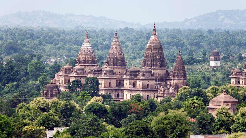 The chhatris of Orchha in Madhya Pradesh, India