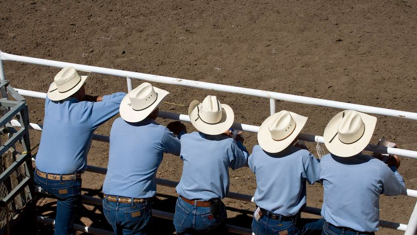 Spectators at the annual Calgary Stampede