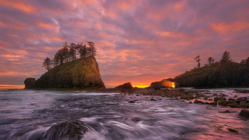 Olympic Coast National Marine Sanctuary, Washington state, USA
