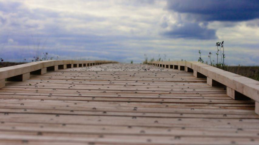 sky outdoor ground pier wooden deck boardwalk jetty