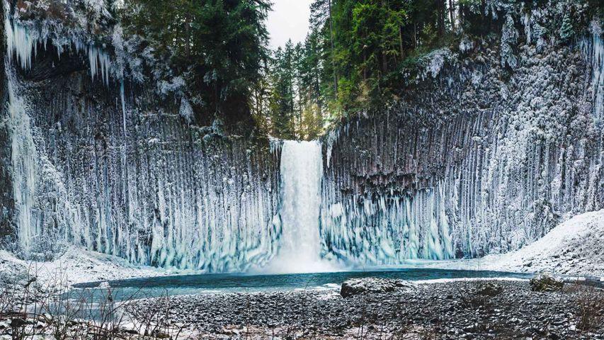 巨大的冰柱悬挂在Abiqua瀑布周围的玄武岩石墙上,俄勒冈