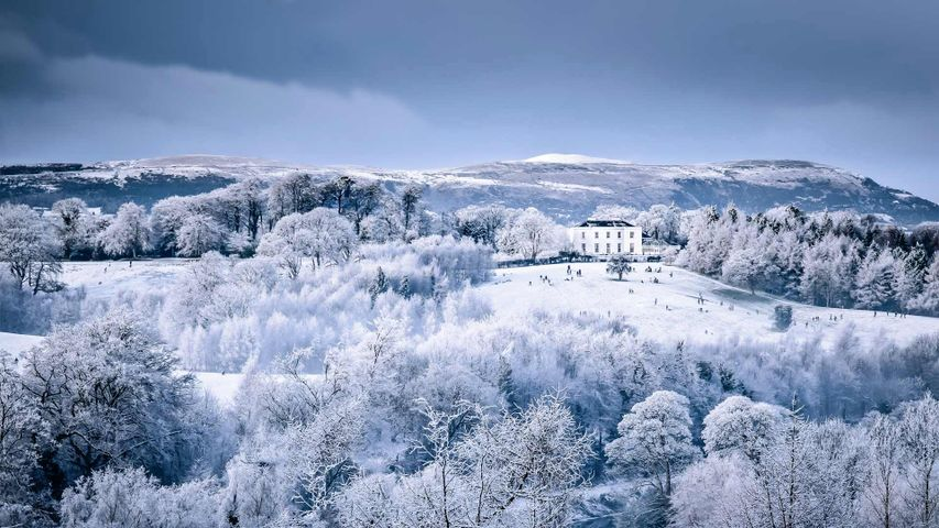 Families play on the snow-covered slopes at Barnett Demesne Park, Belfast, Northern Ireland
