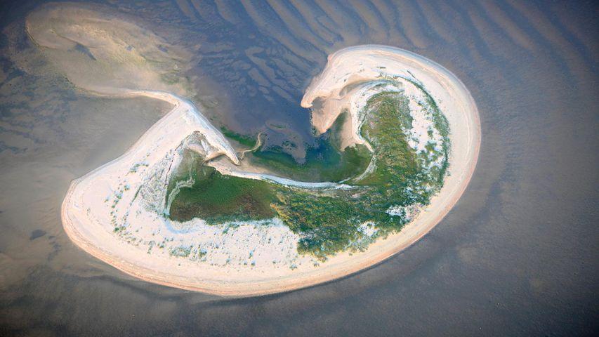 Insel Lütje Hörn im Wattenmeer, Nordsee, Niedersachsen, Deutschland