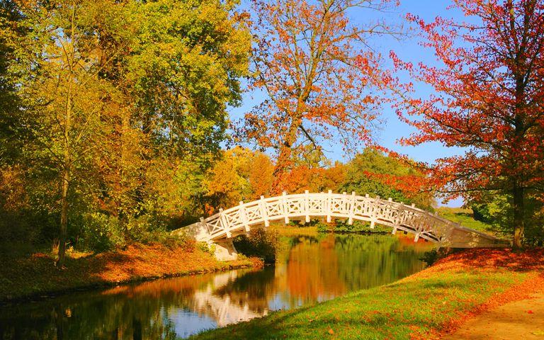 Bridges in Autumn Windows 10 Theme