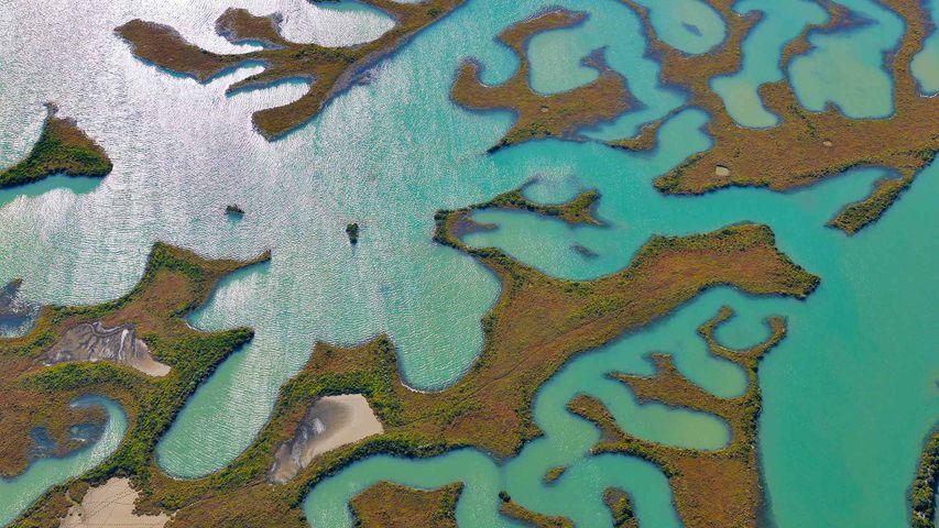 Vista aérea de los humedales del parque natural de la Bahía de Cádiz