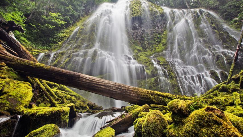 nature waterfall water outdoor plant cascade river fall