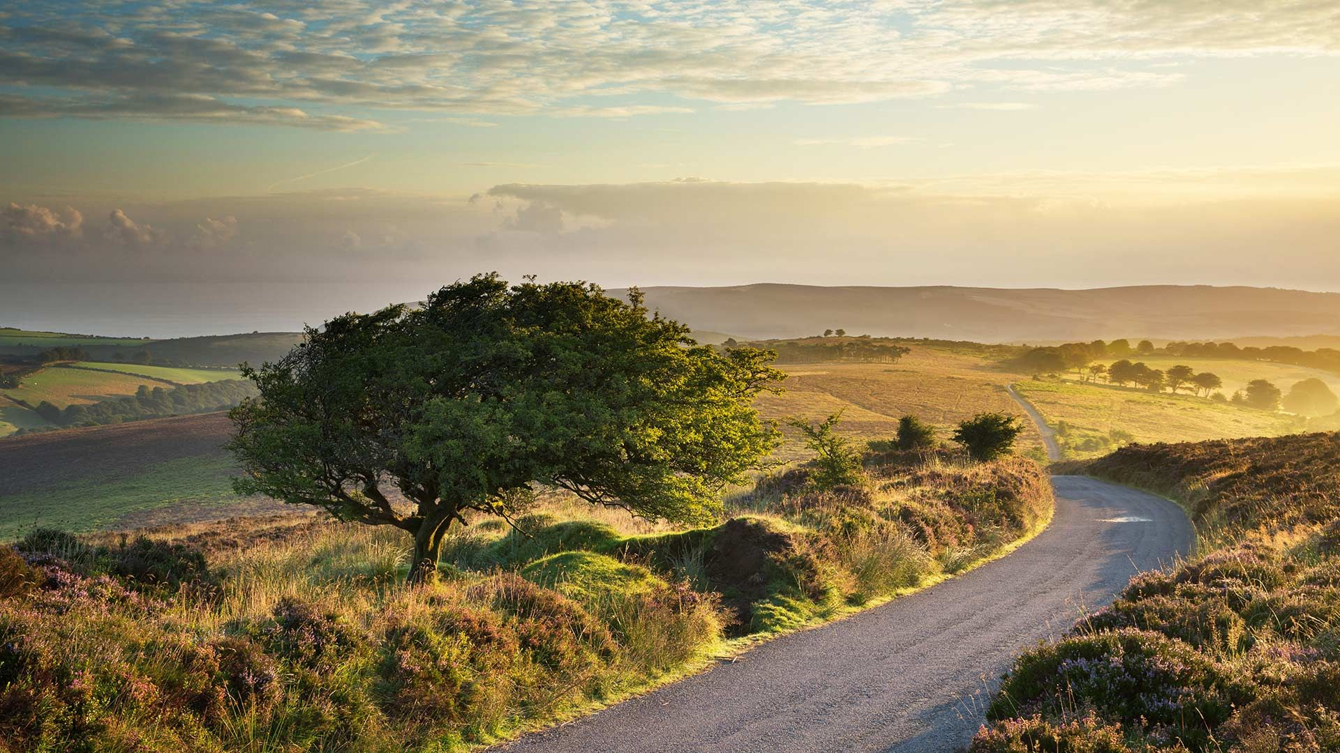 The road over Stoke Pero Common, Dunkery Hill, Exmoor, England