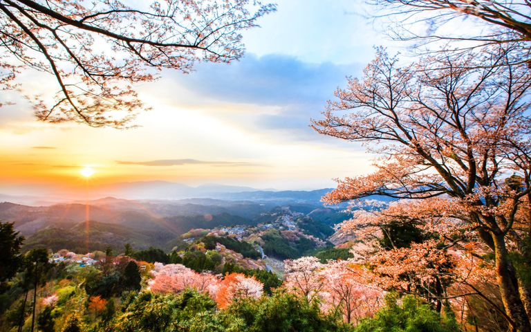 Japanese Landscapes Windows 10 Theme