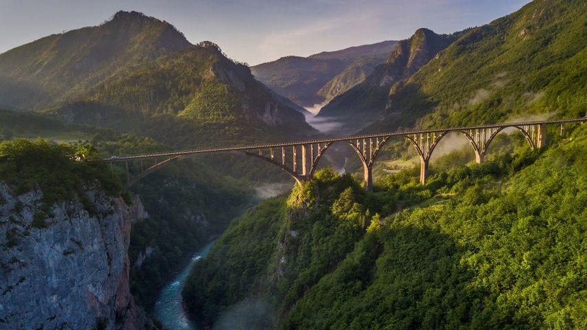 杜德维卡塔拉大桥,黑山