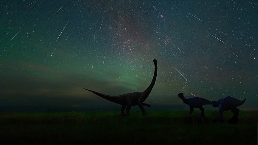 The Perseid meteor shower photographed at the Dinosaur Museum of Erenhot in Inner Mongolia, China