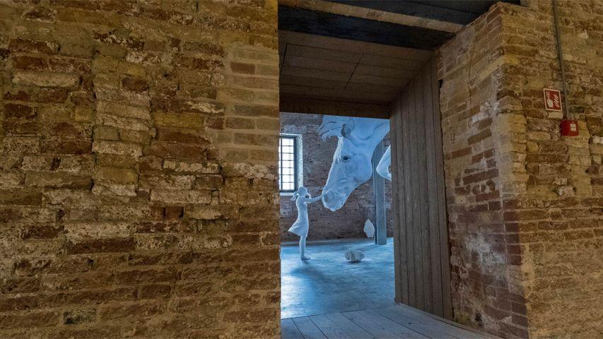 'El Problema del Caballo' by Claudia Fontes in Venice, Italy