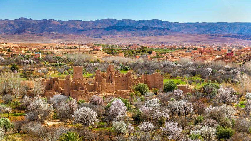 Ruins of a kasbah in Kalaat M'Gouna, Morocco