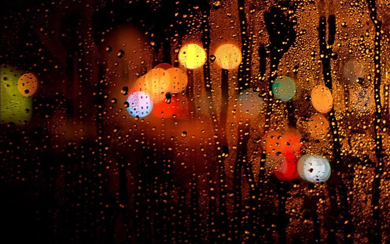rain light nature night